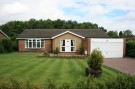 Photo of Collingwood Crescent,