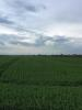 Land for sale in 26 Acres Arable Land...