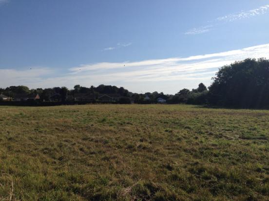 Bungalow Field