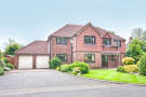 5 bed Detached property to rent in Rose Tree Meadow...