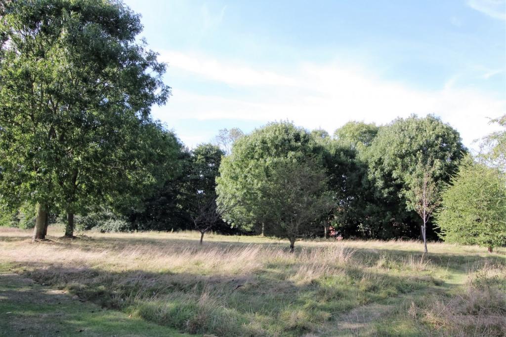 gunton woods and res