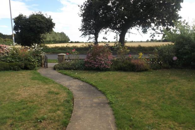 front garden and vie