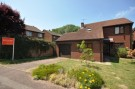 4 bed Detached home to rent in Blackmore...