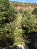 property for sale in Arganil, Beira Litoral