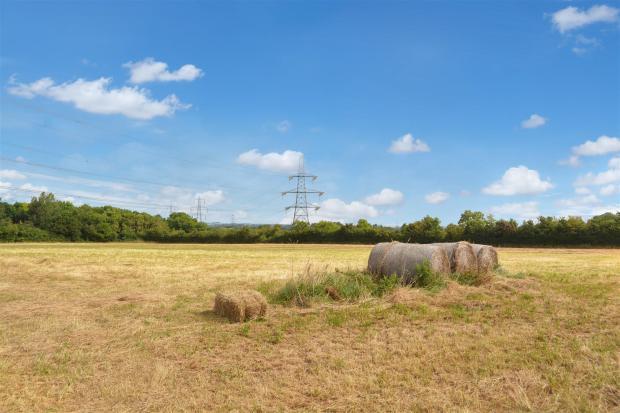 Field View 2.jpg