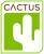 Cactus Living, Sheffield