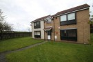 1 bedroom Studio flat to rent in Bradley Close, Ouston...