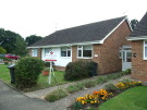 Semi-Detached Bungalow to rent in Bramble Drive, Hailsham...