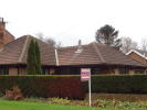 Detached Bungalow to rent in East Neuk Church Street...