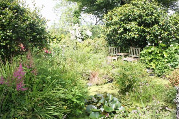 Garden and Pond L...