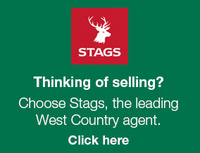 Get brand editions for Stags, Bridport