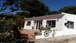 Finca for sale in Lucena del Puerto...