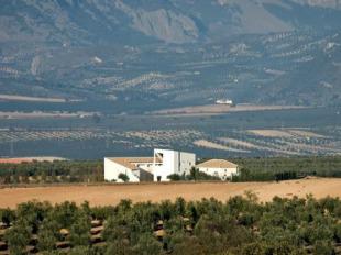 8 bed Villa in Andalusia, Granada, Salar