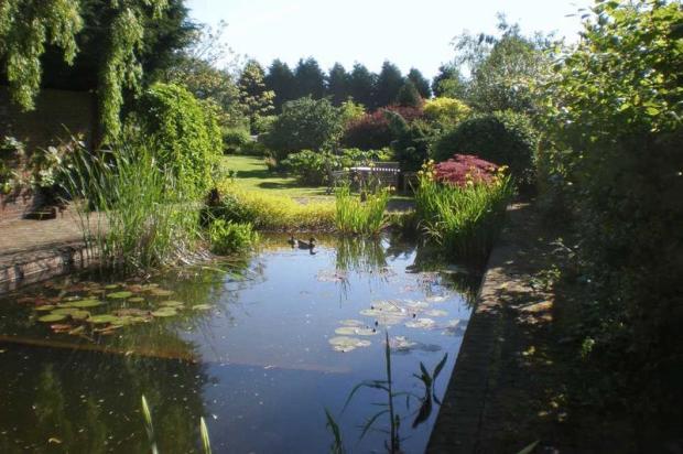 Pond / Pool