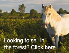 Get brand editions for Spencers of the New Forest , Ringwood