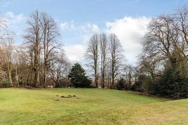 Parkland View