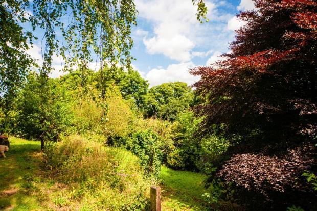 Garden/Woodland