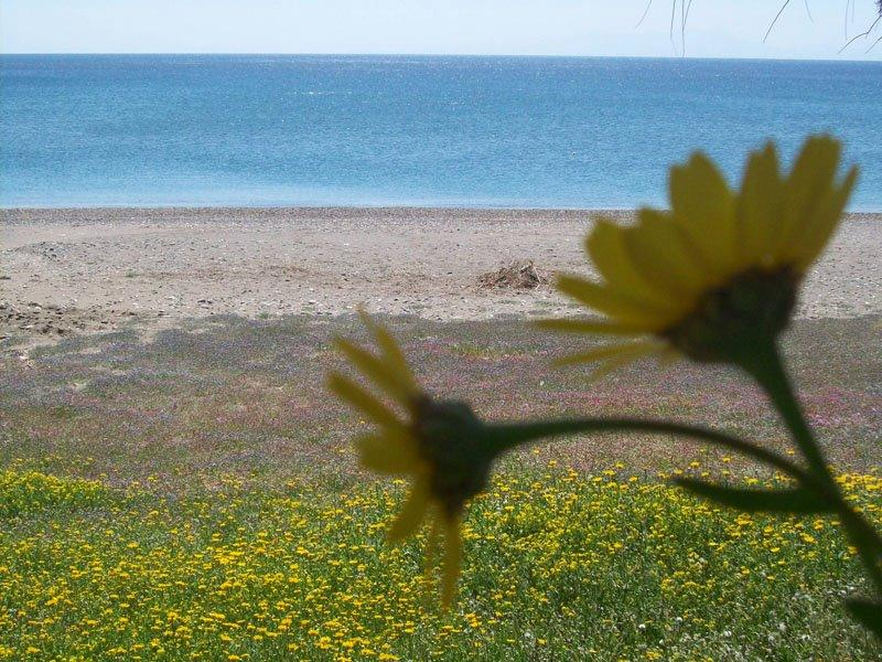 Northern Aegean islands Land
