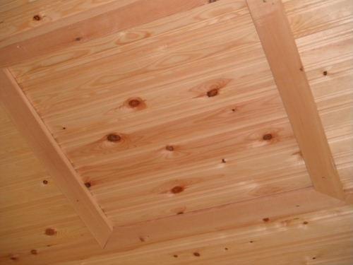 Roof Trap door