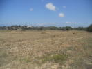 Land for sale in Antimacheia, Kos...