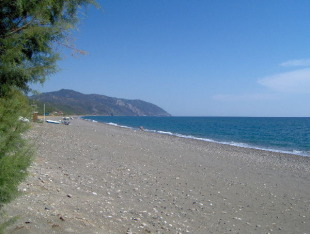 Farm Land for sale in Northern Aegean islands...