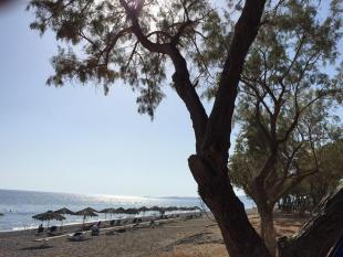 Farm Land in Vatera, Lesbos for sale