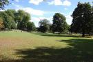 Mortlake Green