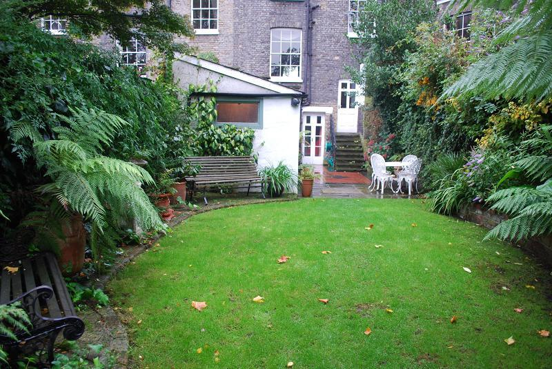 garden and back of house