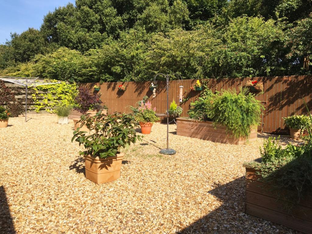New rear garden