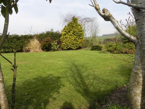 2nd garden (Property Image)