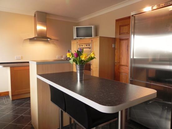 Kitchen fridge 1 (Copy)
