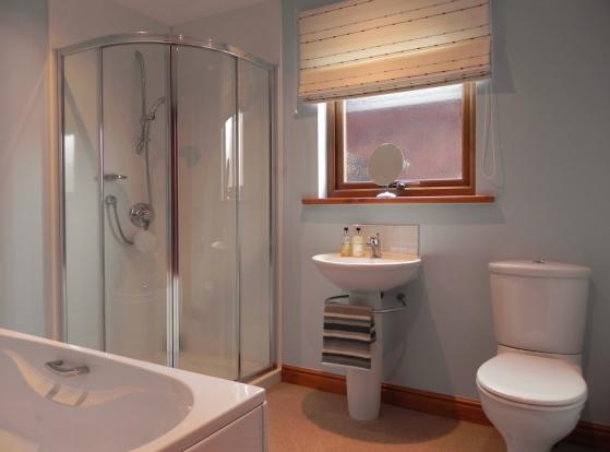 Bathroom (Copy)
