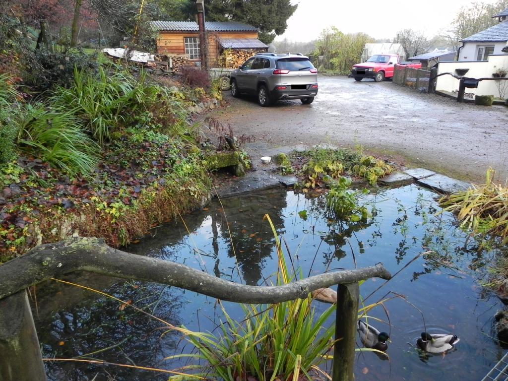 Pond (Property Image)