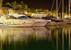 Marina Night