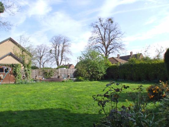 Garden (previous ima