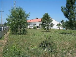 3 bed Farm House for sale in Ribatejo, Tomar