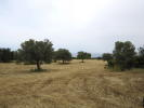 Land in Famagusta for sale