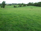 Farm Land in 26.73 Hectares (66.05 for sale