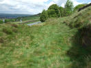 Farm Land in 0.213 Hectares (0.53...
