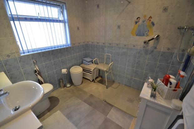 Ground floor shower/wc