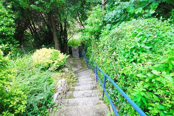 Steps Leading To