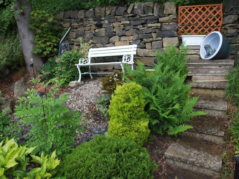 Raised garden ...