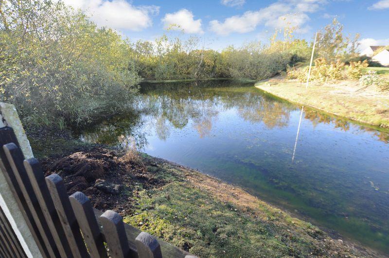 Large Pond