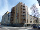 new Flat to rent in PULSE DEVELOPMENT...