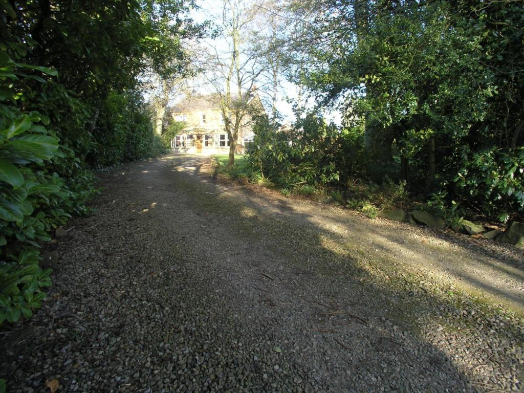 Driveway Approach