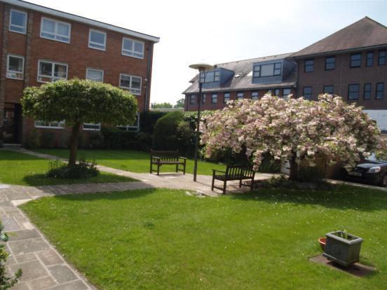 Communal Garden 2.JP
