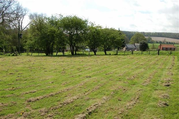 Grassed Area