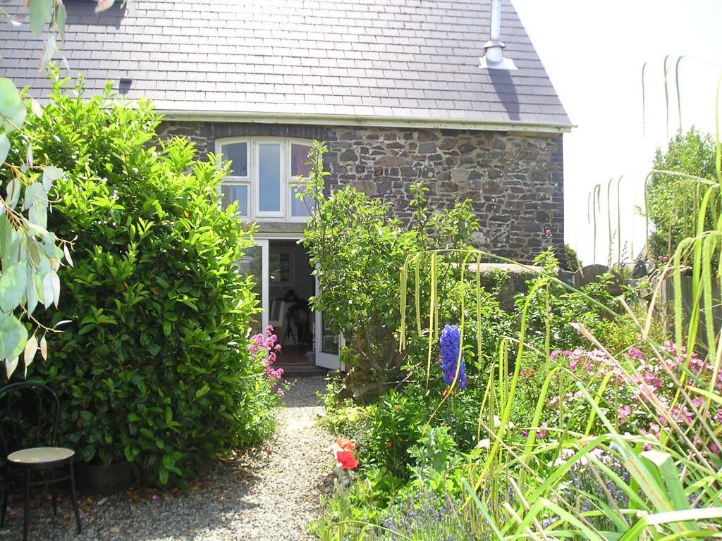 Rear Coutyard Garden