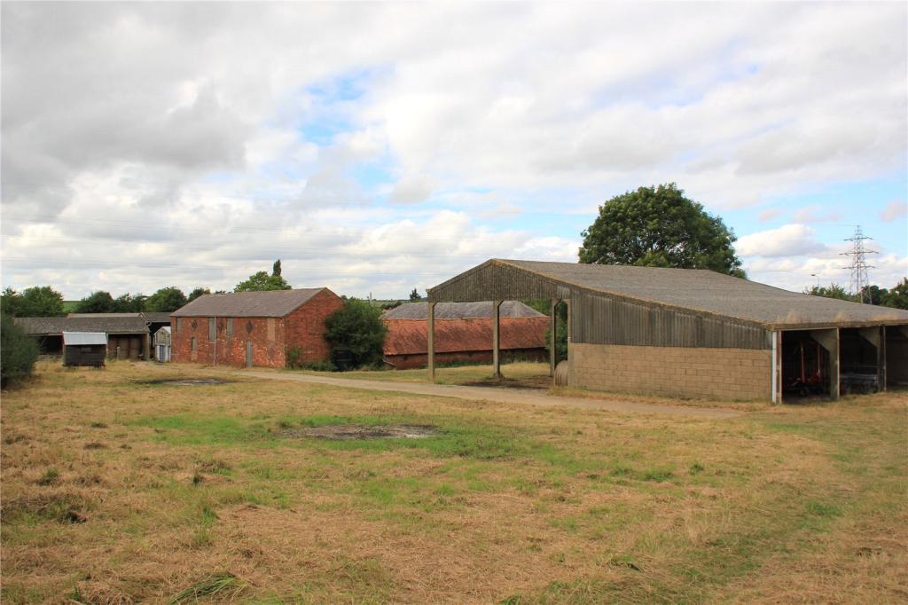 Bull Farm