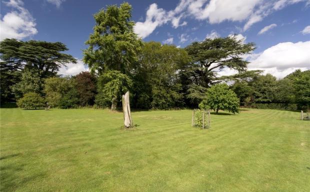 The Cedar Garden
